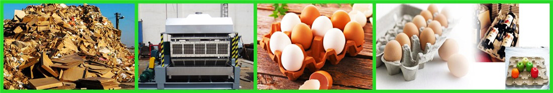 egg-tray-machine-for-sale02