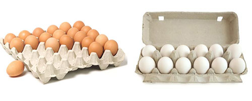 egg tray raw materials