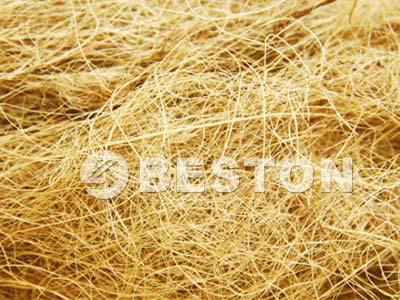 palm-fiber