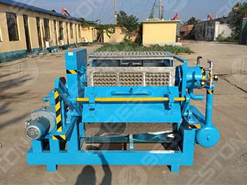 BTF-3-4-egg-tray-machine for sale